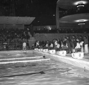 04_piscina-olivais-joaobritogeraldes1967
